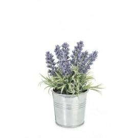 Lavendel in grijs metalen pot 18 cm