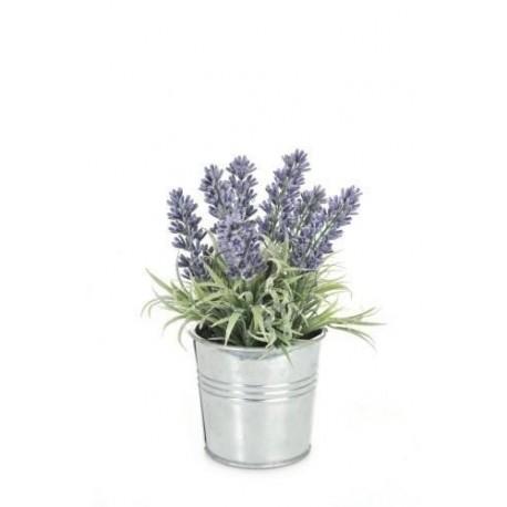 Lavendel in grijs metalen pot