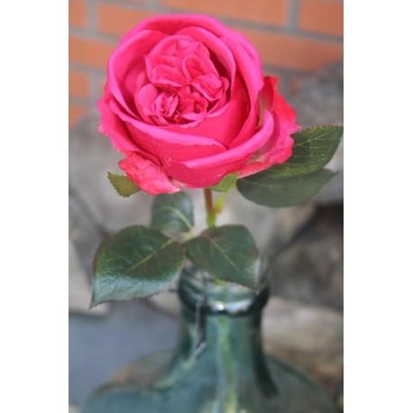 Decoratie bloem /Roos 67 cm