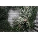 Dennenkrans /Wreath groen /wit 50 cm