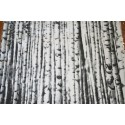 Placemat Berk /Birch 40 x 50 cm